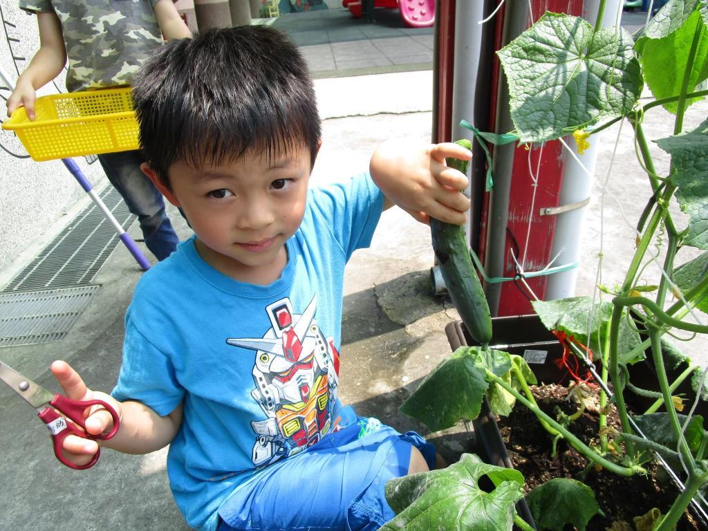 桃園市青年農業推廣協會推動食農教育 帶孩子認識食物原貌